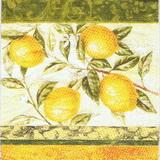 OZ 048 - ubrousek 33x33 - citronky