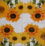 SL 030 - ubrousek 33x33 - slunečnice květy na bílém