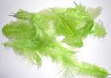 Peří dekorační sv.zelené  - 10-12ks
