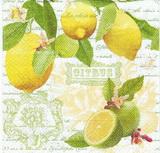 OZ 095 R2S - ubrousek na decoupage 33x33 - citrus