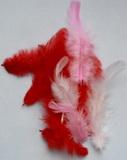 Peří dekorační červeno-růžové 10-12ks