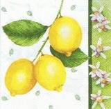 OZ 099 - ubrousky 33x33 -citronky