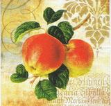 OZ 012 PPD - ubrousek 33x33 - jablka