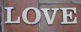 2D výřez nápis LOVE tisk. pat. v. 10cm
