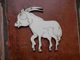 2D výřez antilopa v.9,2x9cm