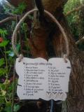 Cedulka Nejpoužívanější-14x11cm,hnědo-bílá p.hněd.srdíčka