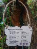 Cedulka Nejpoužívanější-14x11cm,hnědo-bílá p.fial.srdíčka