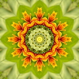 Mandala Radostné úsilí - samolepky 2ks