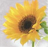 SL 004 - ubrousek 33x33 - slunečnice květ