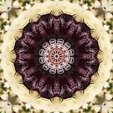 Mandala Upřímnost - samolepky 2ks