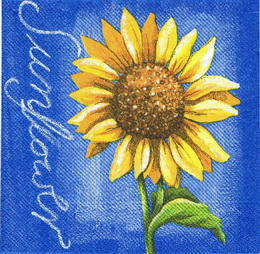SL 012 - ubrousek 33x33 - slunečnice modrá - zvětšit obrázek