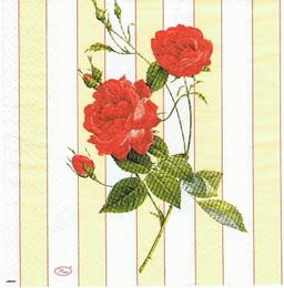 KV 037 - ubrousek 33x33 - růže + pruhy - zvětšit obrázek