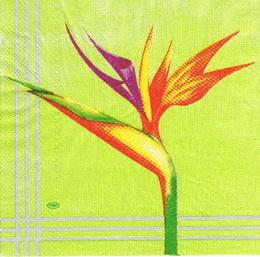 KV 130 - ubrousek 33x33 - barevná kytka na zeleném - zvětšit obrázek