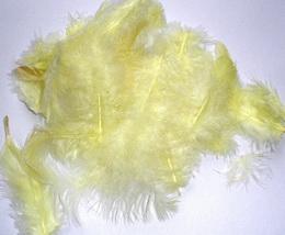 Peří dekorační sv.žluté  - 10-12ks - zvětšit obrázek