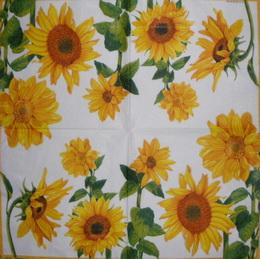SL 031 AMBIENTE - ubrousek 33x33 - slunečnice - zvětšit obrázek