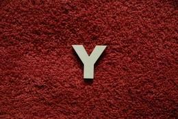 2D výřez písmeno Y v.cca 2,4cm - zvětšit obrázek