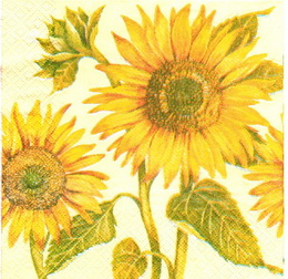 SL 022 - ubrousek 33x33 - slunečnice na světlém - zvětšit obrázek