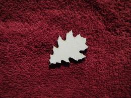2D výřez list javoru malý1 čistý - 4,5x3,5cm - zvětšit obrázek
