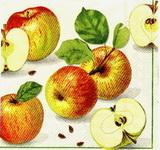 OZ 072 Ihr - ubrousek na decoupage 33x33 - jablíčka
