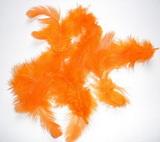 Peří dekorační oranžové  - 10-12ks