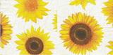 SL 036 - ubrousek 33x33 - slunečnice květy na bílém