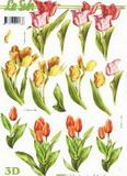 3D papír - barevné tulipány