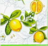 OZ 100 AMBIENTE - ubrousek 33x33 -citrony na bílém