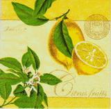 OZ 101 AMBIENTE - ubrousek 33x33 -citrony na žlutém