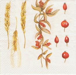 PO 010 - ubrousek 33x33 - podzim pšenice