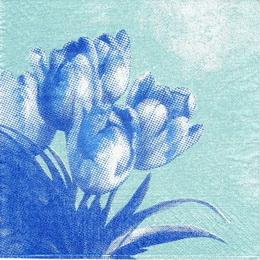 KV 111 - ubrousek 33x33 - tulipány v rohu