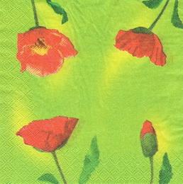 KV 117 - ubrousek 33x33 - vlèí mák na zeleném