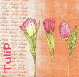 KV 119 - ubrousek 33x33 - tulipány na oranž.