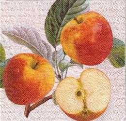 OZ 033 - ubrousek 33x33 - jablíèka