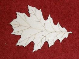 TP3D0277 - 2D výøez list javoru 1 - 9x6,5cm - zvìtšit obrázek