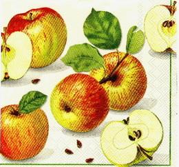OZ 072 Ihr - ubrousek na decoupage 33x33 - jablíèka