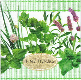 BY 062 PPD - ubrousek 33X33 - fine herbs