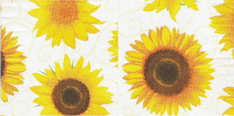 SL 036 - ubrousek 33x33 - sluneènice kvìty na bílém