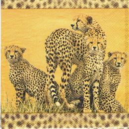 ET 042 AMBIENTE- ubrousek 33x33-gepardi