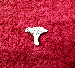 2D výøez houba liška-v.3x3,8cm