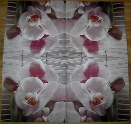 KV 446 HF-ubrousek 33x33 - orchidej