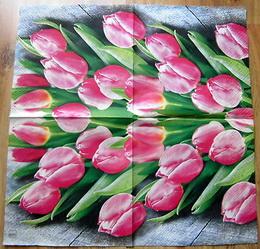 KV 458 HF-ubrousek 33x33 - tulipány